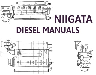 PDF Manuals and Parts Catalog for NIIGATA engine